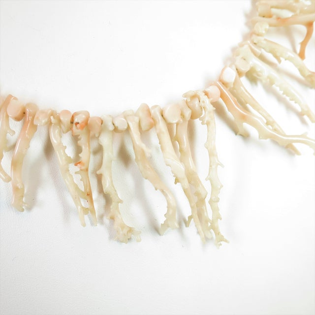 Angel Skin Coral Branch Necklace 1930s For Sale In Los Angeles - Image 6 of 11