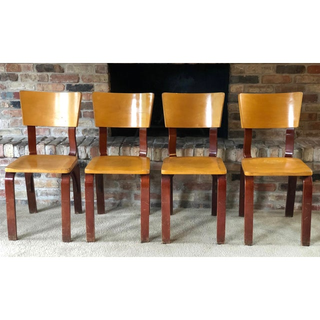 Brown Thonet Bentwood Chairs - Set of 4 For Sale - Image 8 of 8