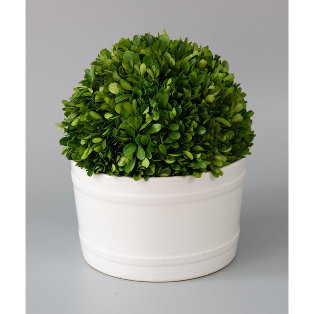 Late 19th Century 19th Century English White Ironstone Planter For Sale - Image 5 of 7