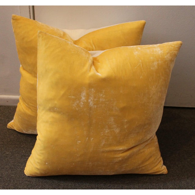Pair of golden yellow velvet pillows with linen backing, down and feather insert and zipper closure. Two pairs available.