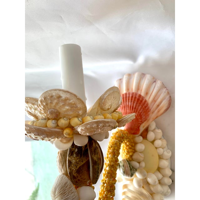 Single-Light Seashell Sconces - a Pair For Sale In West Palm - Image 6 of 8