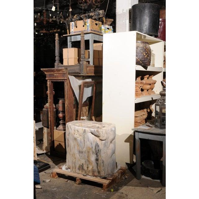 Impressively Large Petrified Wood Table Base For Sale - Image 4 of 12