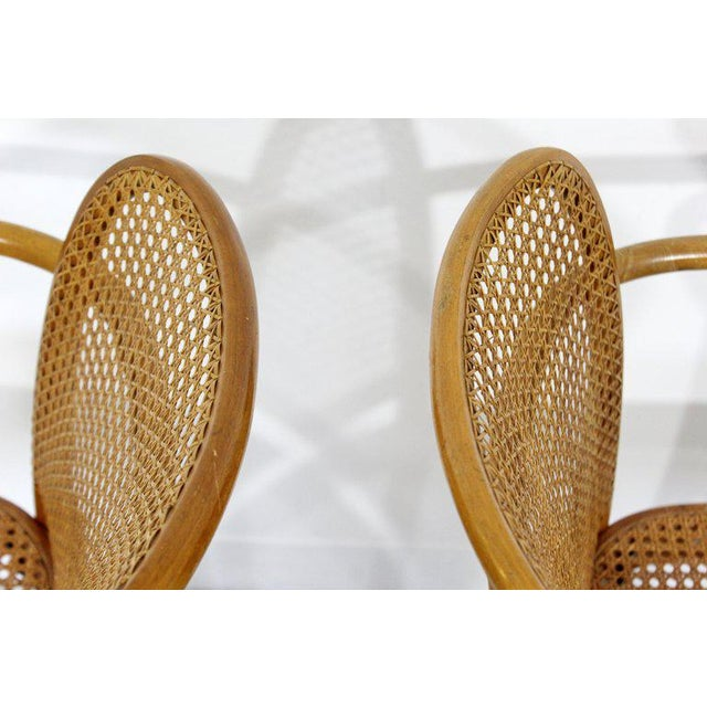 Brown Mid-Century Modern Bentwood & Cane Prague Armchairs Hoffman for Stendig - a Pair For Sale - Image 8 of 10