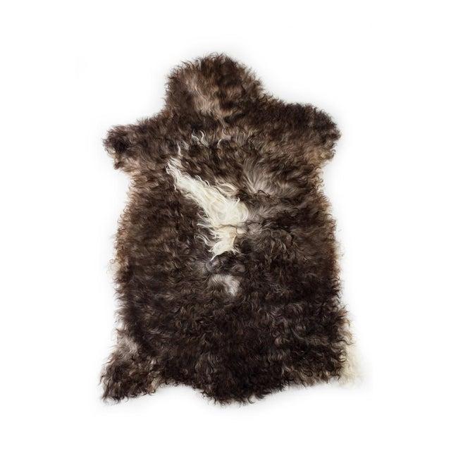 "Animal Skin Contemporary Handmade Wool Sheepskin Pelt Rug -2'2""x3'2"" For Sale - Image 7 of 7"