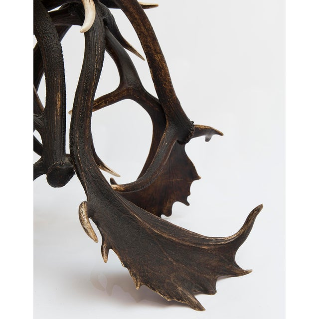 Gold 19th Century Lodge Antler Based Side Table For Sale - Image 8 of 13