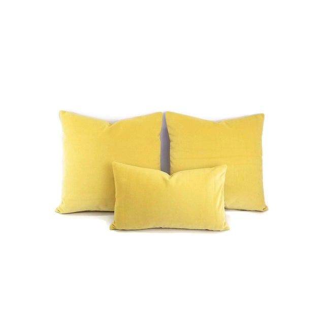 """Solid Yellow Velvet Pillow Cover - 20"""" X 20"""" For Sale - Image 4 of 7"""