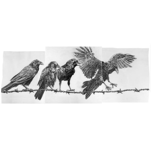 "Contemporary ""Crows on Wire"" Rick Shaefer Charcoal Print For Sale - Image 4 of 5"