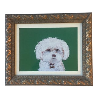 Maltese Dog On Green Print For Sale