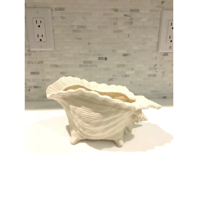 Ceramic Textured Cream Conch Shell Planter - Image 5 of 6