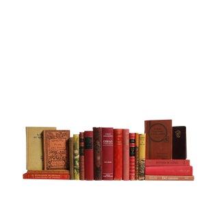 El Camino Rojo - Spanish Language Collection : Set of Twenty Decorative Books For Sale