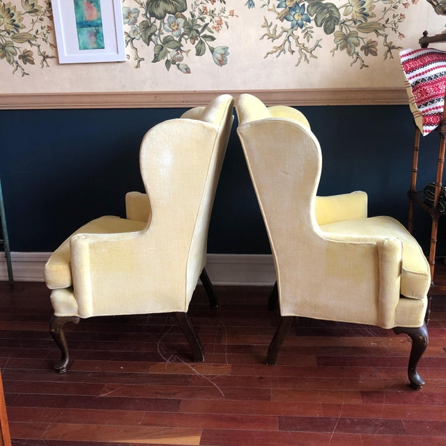 Charming pair of cotton velvet yellow wingback chairs, made by Drexel, with Queen Anne legs and a combed style back...