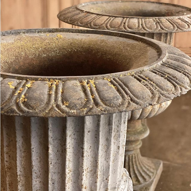 Light Gray Pair Large 19th Century Cast Iron Jardinieres ~ Garden Vases For Sale - Image 8 of 12