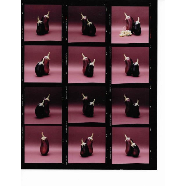 1980s Eggplant Color Photo Contact Sheet by Garo 1980s For Sale - Image 5 of 5