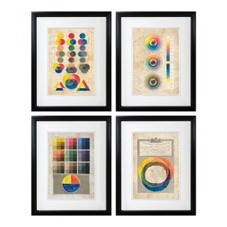 Color Studies... Giclee Antique Plates - Set of 4 For Sale