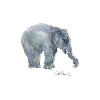 "Elephant Teen, Premium Giclee Print, 9x12"" For Sale"