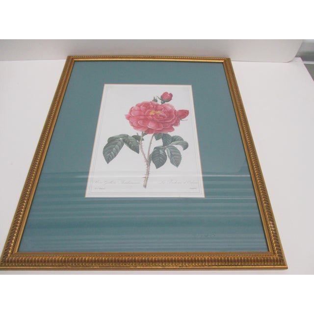 Traditional Vintage Print Framed in Gold Color Wood Frame With Glass Cover For Sale - Image 3 of 6