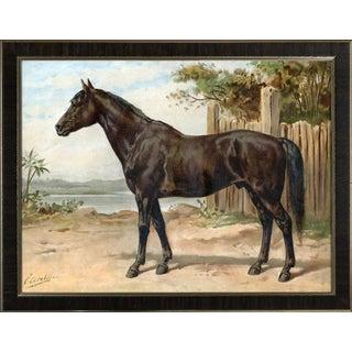 Australian Horse by Eerelman Framed in Italian Wood Vener Moulding For Sale