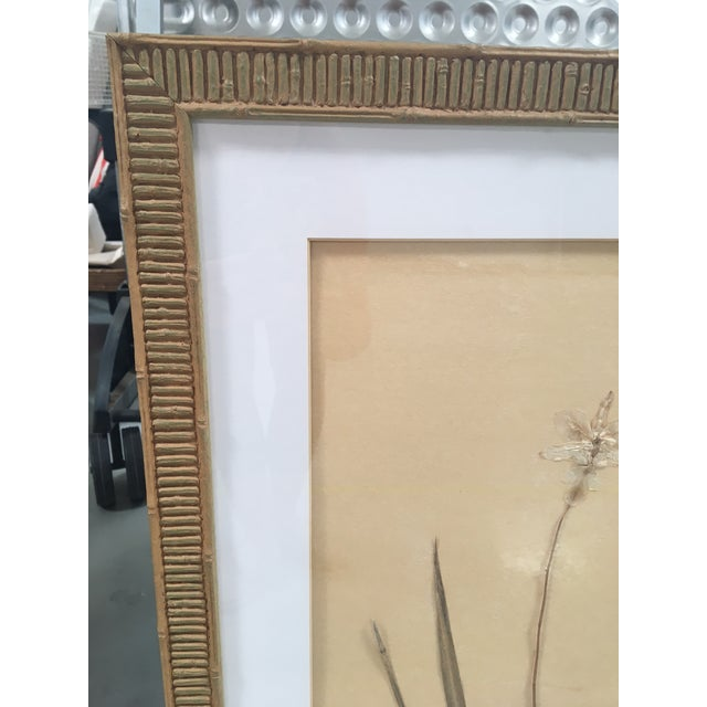 Faux Bamboo Framed Pressed Orchids - A Pair - Image 7 of 7
