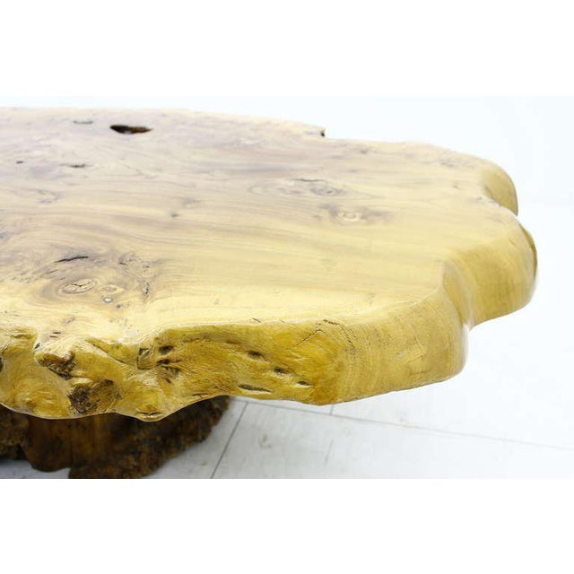 Large Tree Trunk Coffee Table, 1970s For Sale - Image 6 of 9