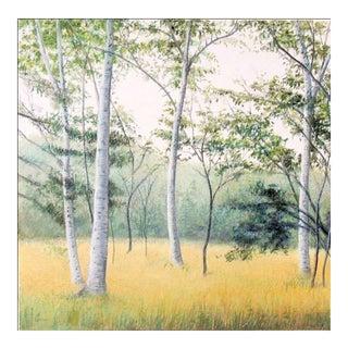 """Elissa Gore """"Birch Field 3"""" For Sale"""