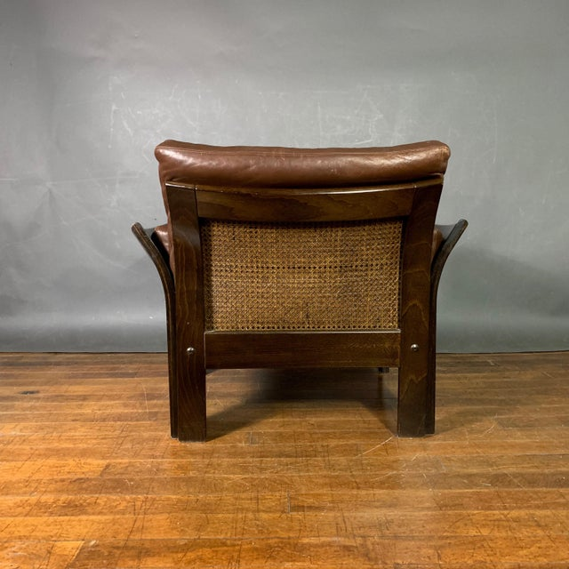 Animal Skin Danish Leather Lounge Chair With French Cane Sides, Late 1970s For Sale - Image 7 of 10