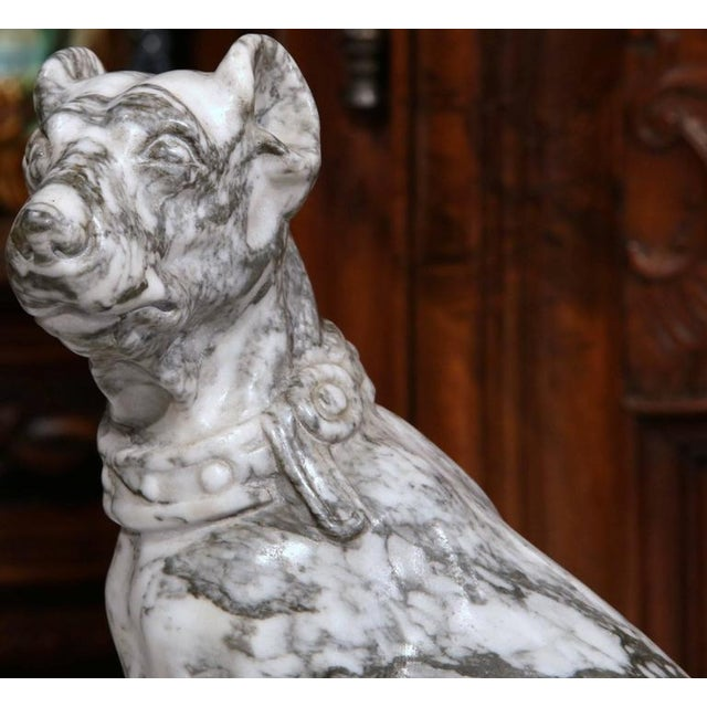 French 19th Century French Gray & White Marble Dog Figure For Sale - Image 3 of 10