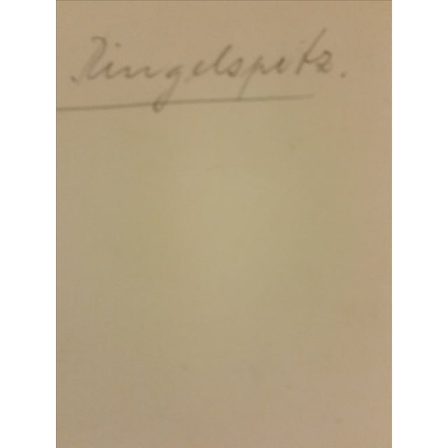 Early 20th-C. Ringelspitz Alps Photography - Image 4 of 5