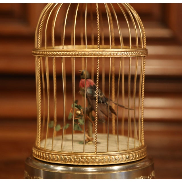 French 19th Century French Automaton Singing Bird in Brass Cage For Sale - Image 3 of 13