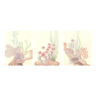 Contemporary Coral Reef Acrylic Triptych Painting by Allison Cosmos - Set of 3 For Sale