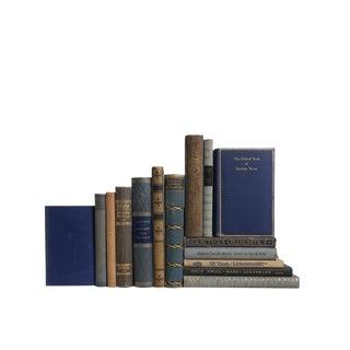 Blaubeere German Language Decorative Books - Set of 15 For Sale