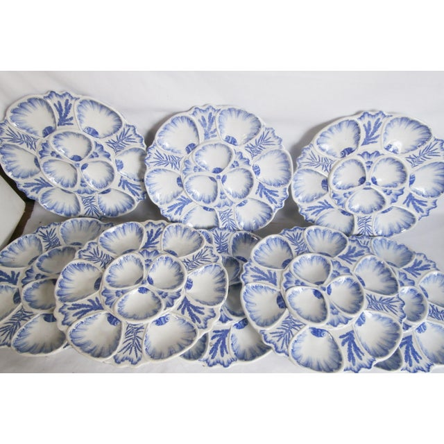 Ceramic 19th Century Bordeaux Blue and White Seaweeds Oyster Plate For Sale - Image 7 of 8