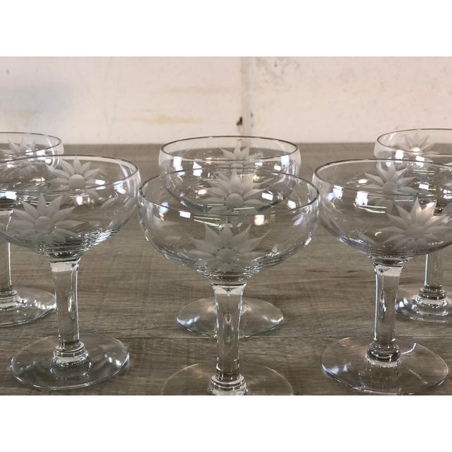 Vintage 1950s Floral Etched Glass Coupes, Set of 6 For Sale - Image 4 of 7