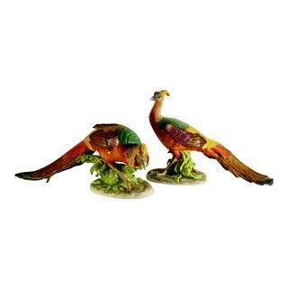 Dresden Porcelain Pheasants Bird Figurines - a Pair For Sale
