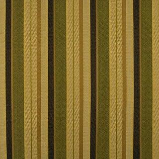 Sample, Suzanne Tucker Home Fleur De Plume Stripe in Peridot