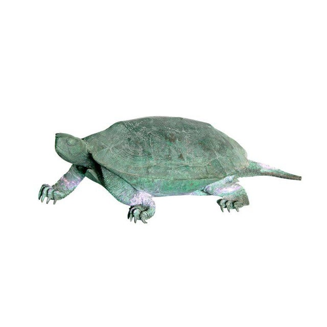 Late 19th Century Japanese Bronze Tortoise, Meiji Period For Sale - Image 13 of 13