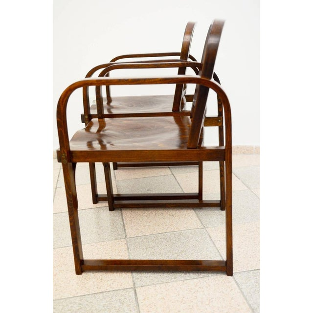 1930s Czech beech & bentwood armchair from Tatra For Sale - Image 5 of 8