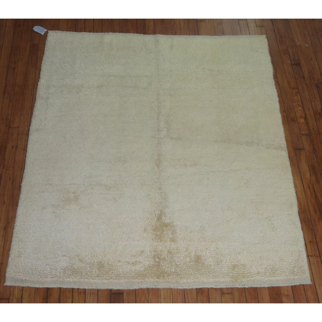 Moroccan rug with a plain, solid design in khaki.