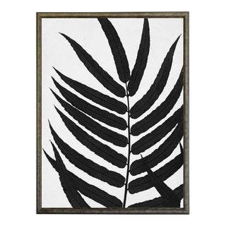 Black Cropped Leaves in Silver & Black Shadowbox For Sale