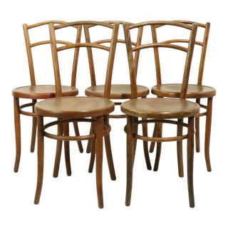 Set of 5 Bentwood Cafe Chairs by Fischel After Thonet For Sale