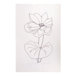 """Original Vintage 1978 Black and White Botanical """"American Lotus"""" Drawing Unframed on Paper Signed Betsey Tryon For Sale"""