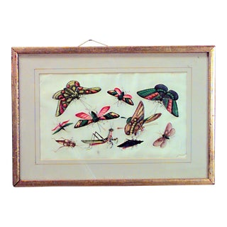 Six Gilt Framed Watercolors on Silk Depicting Butterflies and Other Insects For Sale