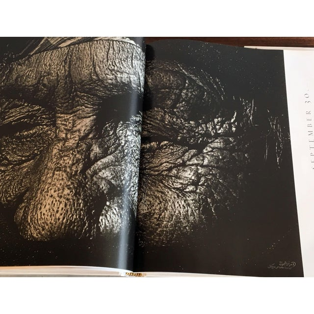White Albert Watson: Maroc Hardcover Photography Art Book For Sale - Image 8 of 10