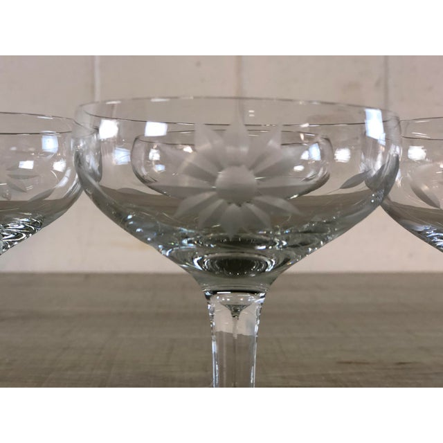 Vintage 1950s Floral Etched Glass Coupes, Set of 6 For Sale In Boston - Image 6 of 7