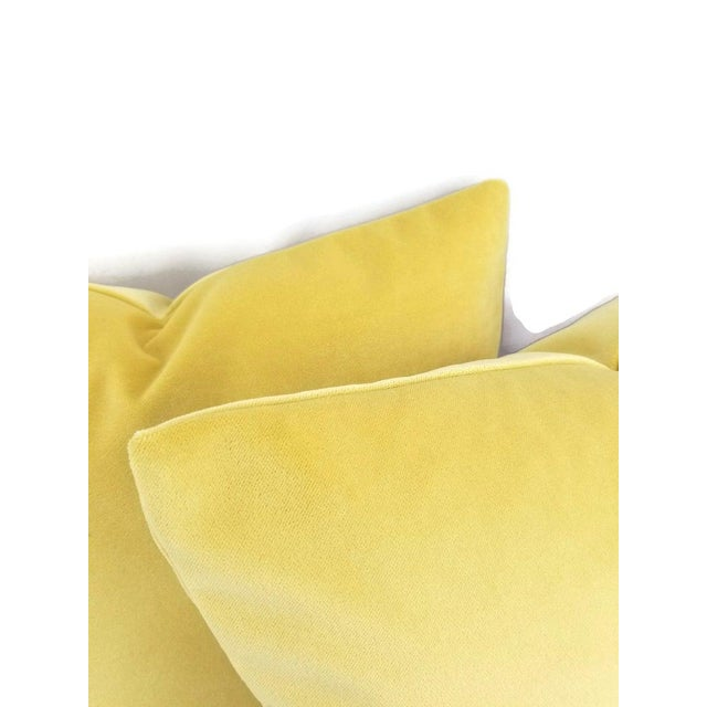 """Contemporary Solid Yellow Velvet Pillow Cover - 20"""" X 20"""" For Sale - Image 3 of 7"""