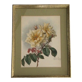 1905 Framed Paul De Longpre Yellow Roses Lithograph Printed by the Grey Litho. Company, New York For Sale