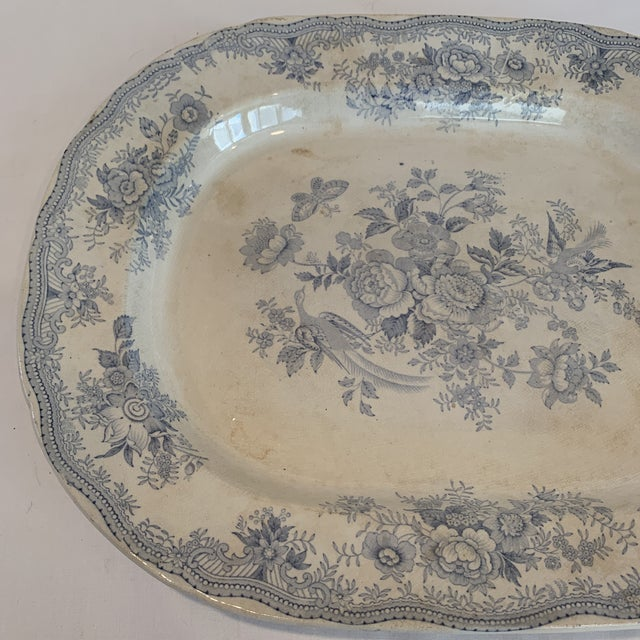 This is a large Asiatic Pheasants platter by C & E. The platter has some discoloring and a place where the glaze was thin...