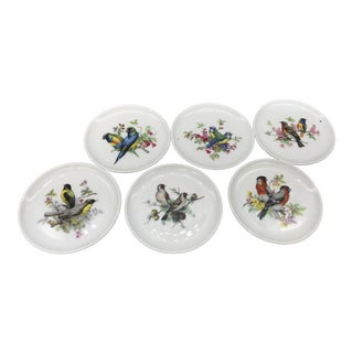 1960s Vintage Golden Crown's Schumann Arzberg Bavarian Bird Coasters - Set of 6 For Sale
