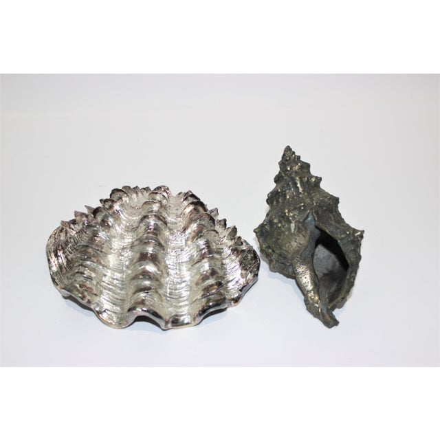 Mid 20th Century Shell Sculptures Ribbed Clam and Conch - a Set of 2 For Sale - Image 5 of 12
