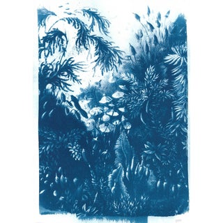 Vintage Botanical Plant, Handmade Cyanotype Print on Watercolor Paper. Limited Edition For Sale