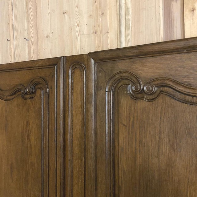 Pair Plaquards ~ Armoire or Cabinet Doors, 19th Century For Sale - Image 10 of 12